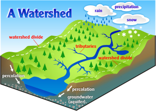Image result for watershed